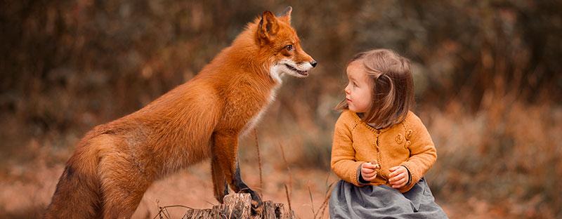 bimba che guarda impaurita una volpe vicinissima a lei